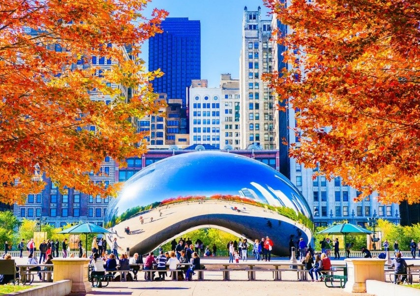 Chicago During the Fall; What You Can Do!